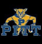 Pitt Tiger